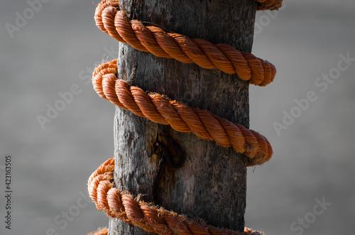 Obraz na plátně Corda arancione attorcigliata attorno a un palo di legno