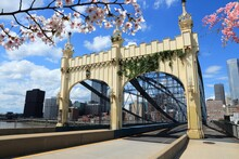 Spring In Pittsburgh City