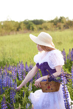 A Gentle Young Long-haired Girl In A White Dress, A Purple Corset And A Straw Hat Among A Purple Field, Holds A Basket With Lupins. The Concept Of Nature And Romance.