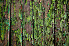 Green Paint On Wood, Old Fence, Old Door Board With Peeling Green Paint, Crisp Old Painted Wood Wood
