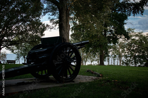 Canvas Print cannon in the park