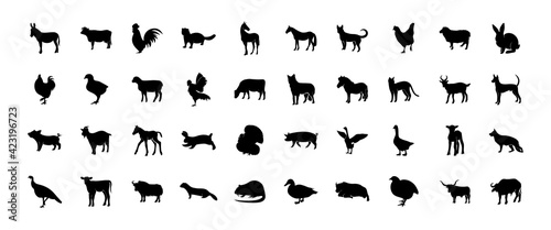 Stampa su Tela Set of Silhouettes of Pets