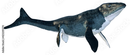 Foto 3D Rendering Mosasaur on White