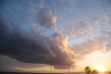 Sunset  Sunrise With Clouds, Light Rays And Other Atmospheric Effect With Black Palm