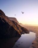 Fototapeta Fototapety z morzem do Twojej sypialni - Dzika piaszczysta plaża o zachodzie słońca
