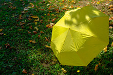 Yellow Umbrella In The Grass Covered With Fallen Yellow Leaves In Sunlight. Copy Space. Autumn Season. Sales, Retail Concept