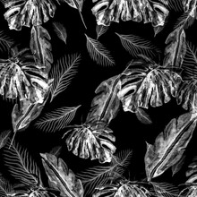 Leave Background. White Retro Hawaii Pattern. Metal Leaves Flowers Tropical. Monochrome Tropic Cover. Hawaii Prints. Watercolor Tropical Summer. Backdrop Plants.