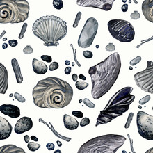Seamless Pattern Of Seashells And Pebbles On White Background