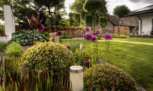 Fototapeta ogród z pasją, ścianka w ogrodzie, wiosna w ogrodzie, ławeczka w ogrodzie, czosnek ozdobny obraz