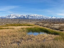 Snow In The Mountains And Dried Grass In The Foreground Near San Jacinto Wildlife Area In Perris, California