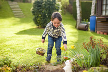 Young Child During The Easter Egg Hunt