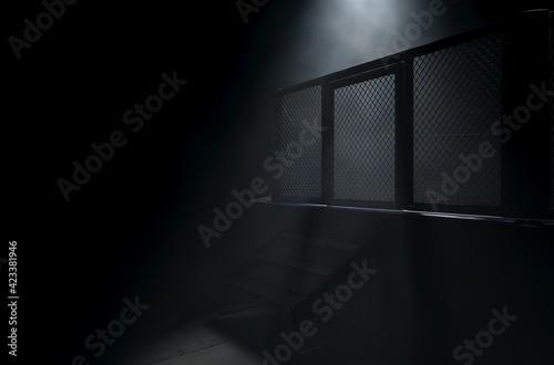 Fotografiet MMA Cage Door Spotlight