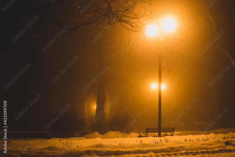 Fototapeta Park Saski w Lublinie we mgle nocą