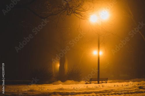 Fototapeta Park Saski w Lublinie we mgle nocą obraz