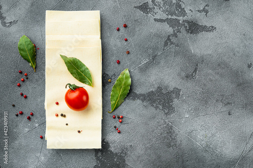 Fototapeta Dried uncooked lasagna pasta sheets, with seasoning and herb, on gray stone background, top view, flat lay, with copy space for text obraz