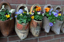 Traditional Dutch Clogs (klompen) Wooden Shoes As Very Colorful Flower Pots On Brick Wall Background. Clouse Up. My Souvenirs From A Holland Vacation. Ideas For Country House Decoration. Wall Decor.