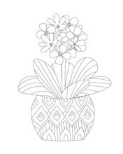 Beautiful Flower In Decorative Flowerpots With Geometric Ornamen