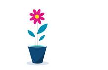 Icona, Fiore, Vaso, Primavera