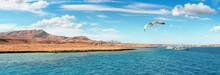 View On Egyptian Coast