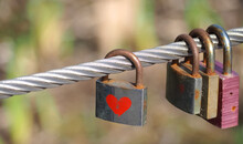 Isolated Love Locks On A Metal Fence