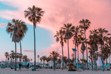 Venice Beach, California Sunset With Palm Trees And Buildings In Pink And Teal Within Los Angeles