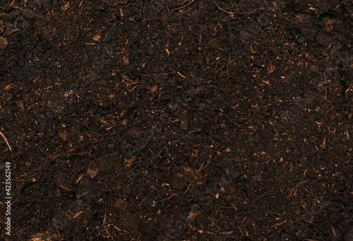 Fototapeta black fresh soil obraz