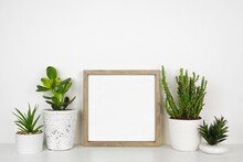 Mock Up Wood Square Frame With A Variety Of Succulent And Cactus Plants. White Shelf Against A White Wall. Copy Space.