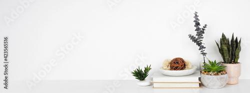 Fototapeta Home decor and houseplants on a shelf. White shelf against a white wall. Banner with copy space. obraz