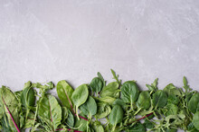 Row Of Fresh Leafy Vegetable Border: Spinach, Beet, Arugula On The Gray Background, Healthy Eating