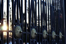 View Of The Wrought-iron Fence With Copper Ornaments Against The Background Of Trees In Early Spring