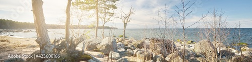 Fototapeta Rocky shore of the Baltic sea under a clear blue sky with cirrus clouds