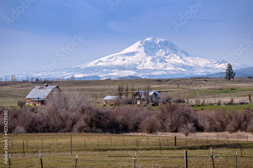 Photo Mt. Adams and landscape in Washington state.