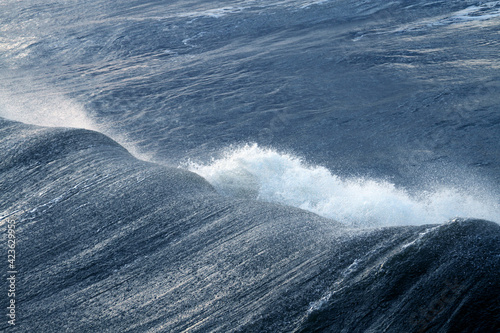 Huge Ocean Wave Breaking Hard During a Hurricane Fototapet