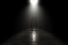 Futuristic Cricket Wickets