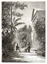 Elegant People Having Conversation In A Luxuriant Garden Of A Colonial House In Saint-Pierre, Reunion Island. Ancient Grey Tone Etching Style Art By Stock, Le Tour Du Monde, 1862