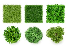 Green Ground Top View. Eco Concept Pieces Of Grass And Bushes Forest Items Decent Vector Realistic Plants