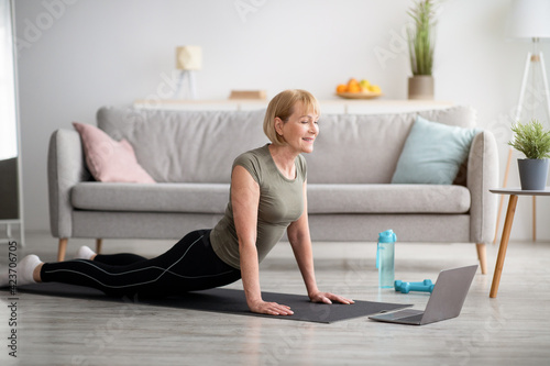 Fototapeta Domestic yoga. Flexible mature lady doing cobra asana on sports mat, training to online tutorial on laptop, indoors obraz