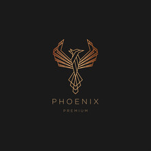 Luxurious Phoenix Bird Gradient Line Art Logo Icon Design Template Vector Illustration