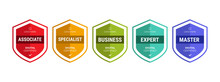 Certified Logo Badge Shield Design For Company Training Badge Certificates To Determine Based On Criteria. Set Bundle Certify With Colorful Security Vector Illustration.