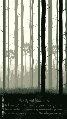 Vertical illustration with view from pine trunks woods and grassy coniferous forest and place for text.