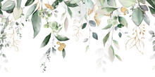Watercolor Botanic, Leaf And Buds. Seamless Herbal Composition For Wedding Or Greeting Card. Spring Border With Leaves Eucalyptus