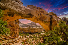 Cassidy Arch At Capitol Reef