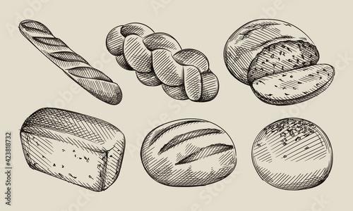 Fototapeta Hand drawn sketch set of bread types. Burger bun, white sandwich bread, baggel, Multigrain bread, challah, ciabatta  obraz