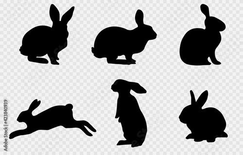 Fototapeta Vector set of silhouettes of hares