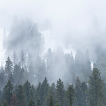 USA, Idaho, Cascade, Clouds And Fog Over Forest In Cascade Range
