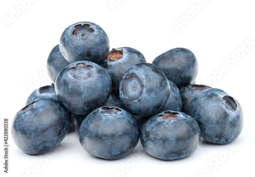 blueberry or bilberry or blackberry or blue whortleberry or huckleberry isolated Fototapeta