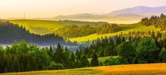wiosenny poranek w Pieninach w południowej Polsce