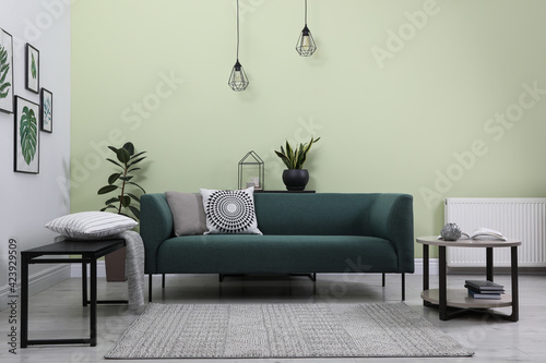 Fotografie, Obraz Stylish living room interior with comfortable green sofa and floral pictures