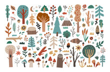 Big Collection Set Of Hand Drawn Woodland Flora Clipart Isolated On White Background