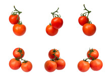 Collection Of Tomatoes On The Vine Isolated On White Background